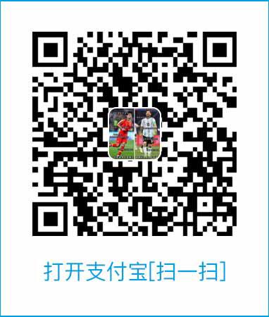 赞助搜乐足球插图(1)